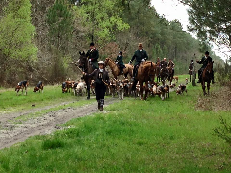 chasse-a-courre-gironde-privee